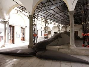 La coda della balena e altri progetti. Claudia Losi